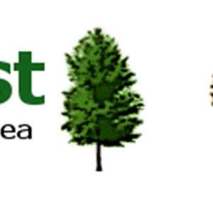 Trees by Forrest Logo