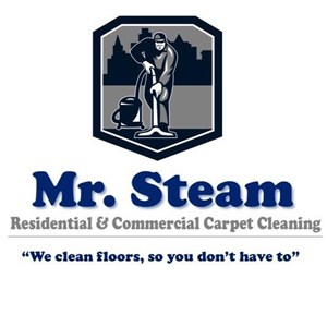 Mr. Steam Carpet Cleaning Logo