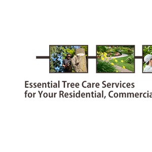 Red Hill Tree Service Logo