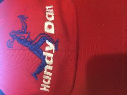 Handyman of DFW Logo