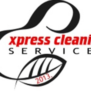Express Cleaning Services Logo