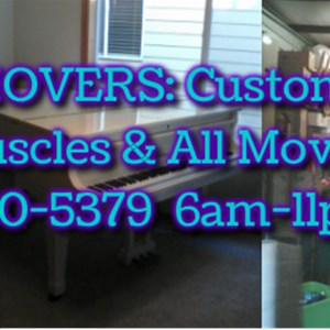 Brians Expert Movers Cover Photo