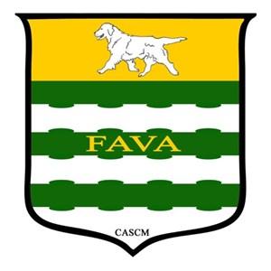 FAVA Renovations Cover Photo