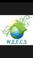 Washtenaw Eco Friendly Cleaning Services Logo