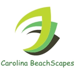 Carolina Beachscapes Logo