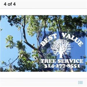 Best Value Tree Service Cover Photo