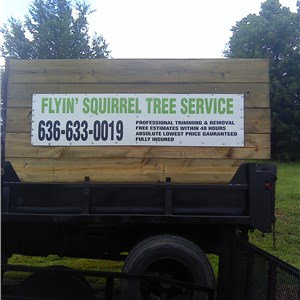 Flyin Squirrel Tree Service Cover Photo