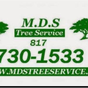 M D S Tree Service Logo