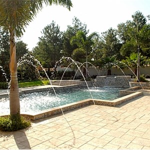 Daniel Birch pool service Logo