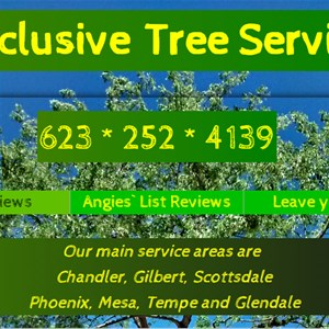 Exclusive Tree Service Cover Photo