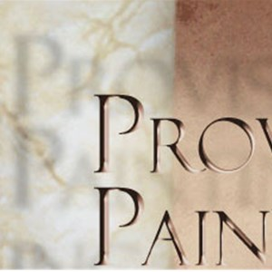 Provision Painting Logo