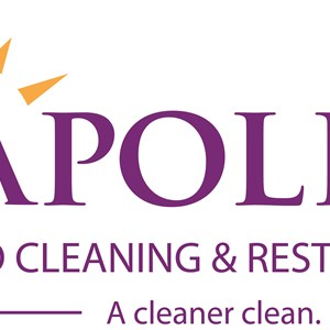 Apollo Pro Cleaning & Restoration Logo