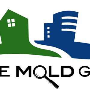 The Mold Guy Inc. Logo