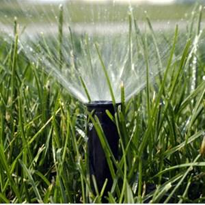 Sprinkler Guy Irrigation Co Logo