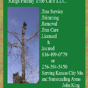 Kings Family Tree Care Logo