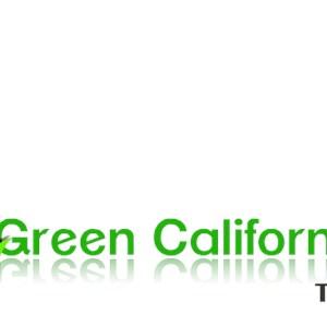 Green California Turf Logo