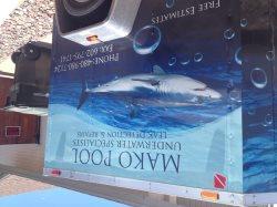 Mako Pool Underwater Specialists Logo