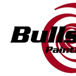 Bullseye Painting Cover Photo