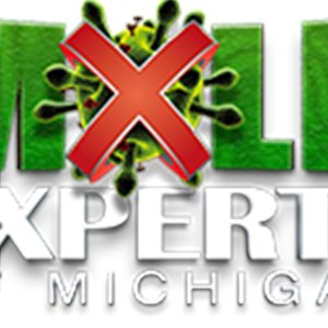 Mold Experts Of Michigan Logo