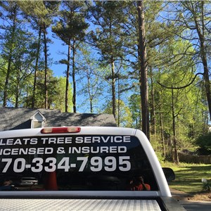Cleats Tree Service Logo