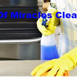 Hands of Miracles Cleaning Service Logo