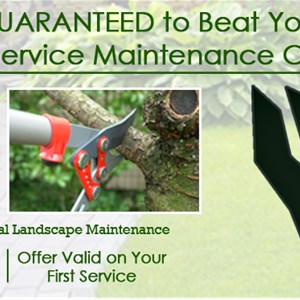 J & M Lawn Service And More Cover Photo