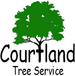Courtland Tree Service Logo