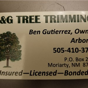 B&g Tree Trimming Logo