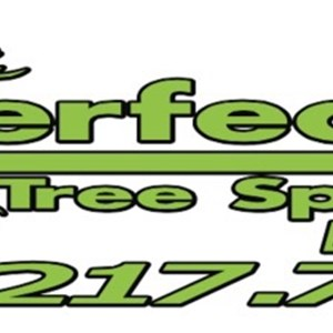 Perfection Tree Specialist Logo