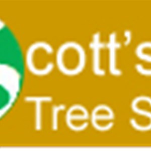 Scotts Tree Service MN llc Logo
