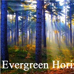 Evergreen Horizon, LLC Logo