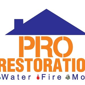 Water Damage Cost Services Logo