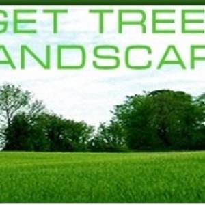 Budget Tree & Landscape Logo