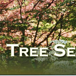 H & H Tree Service Inc Logo
