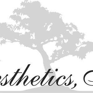 Aesthetics, Inc. Logo