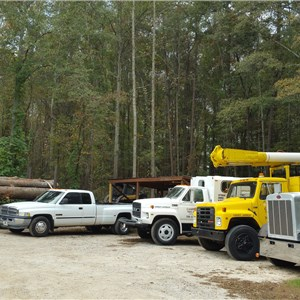 Campbells Tree Service, LLC Cover Photo