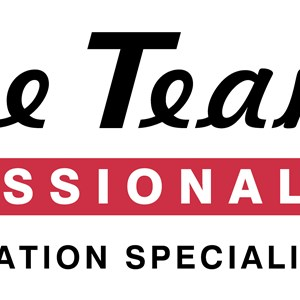 Service Team of Professionals Logo