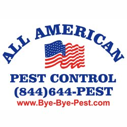 All American Termite & Pest Logo