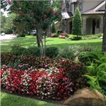 How Much Landscaping Cost