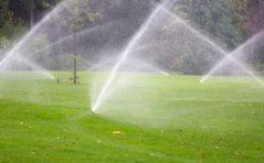 Texas Irrigation Systems Logo