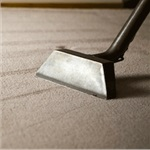 Anexpert Carpet Cleaning Logo