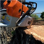 Custom Cuts Tree Service Logo