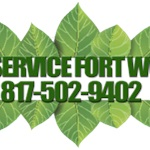 Tree Service Fort Worth Logo