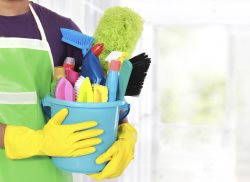 Alvina Cleaning Service Logo
