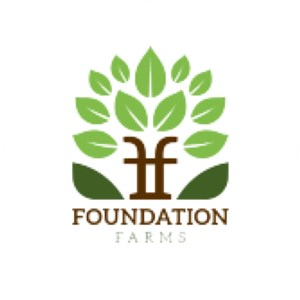 Foundation Farms Handyman SVC Logo