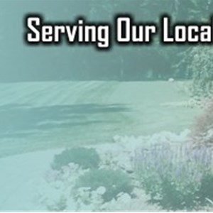 Palotta Landscaping Cover Photo