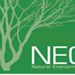 Natural Enviroments Corp Logo