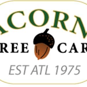 Acorn Tree Care Cover Photo