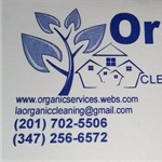 Organic Healthy Cleaning & Painting Logo