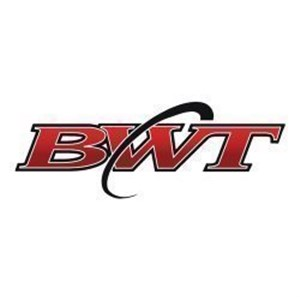 BWT Management Logo